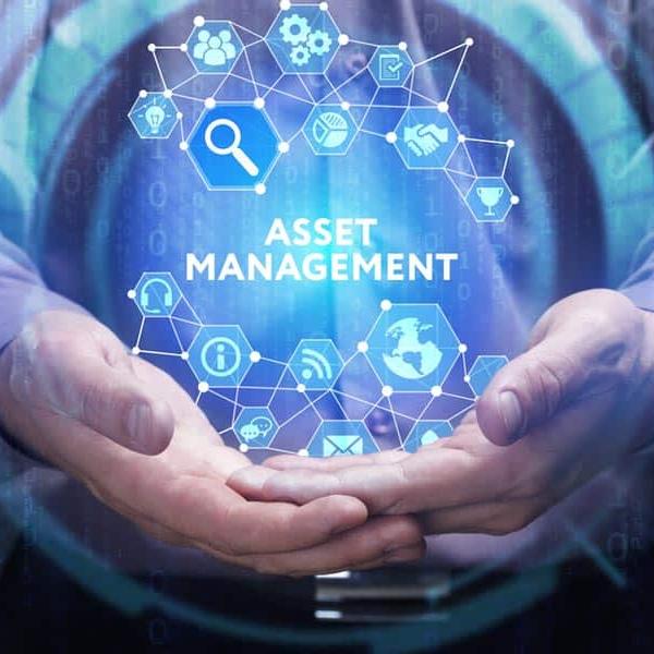 asset-management-pns